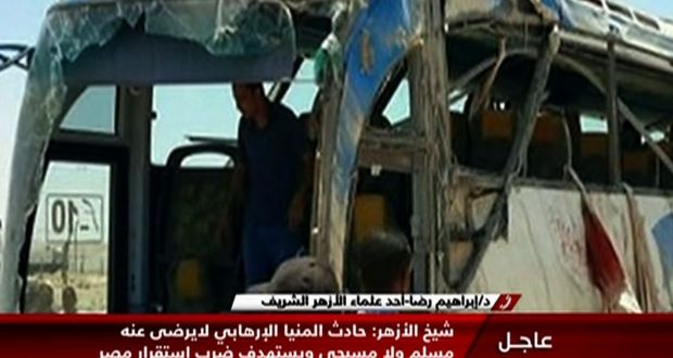 An image grab taken from Egypt's state-run Nile News TV channel shows the remains