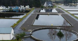 The Vartry water treatment plant at Roundwood, Co Wicklow. Photograph: Cyril Byrne/The Irish Times