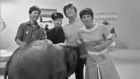 Archive: Lulu the elephant crashes the 'Blue Peter' set