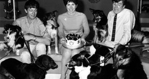 Blue Peter presenters  John Noakes, Valerie Singleton and Peter Purves, with the usual canine guests, in August 1968.  Photograph: PA Wire
