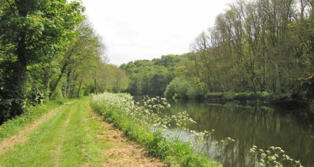 """River Barrow trail: """"The grassy towpath is the green frame for the river,"""" according to Olivia O'Leary River Barrow trail: """"The grassy towpath is the green frame for the river,"""" according to Olivia O'Leary. Photograph: Paddy Woodworth"""