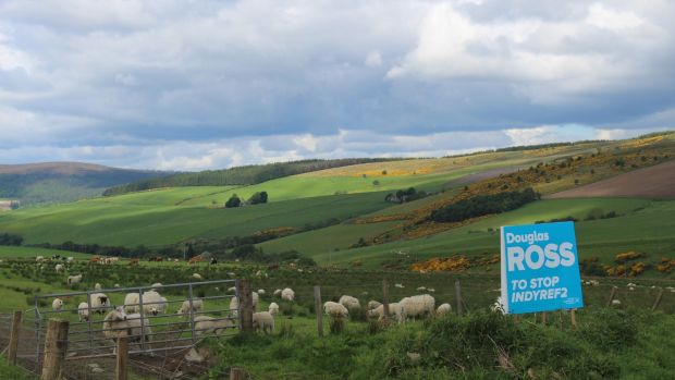 A sign near Dufftown in the constituency of Moray