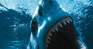 Jaws: bit off more than he could chew