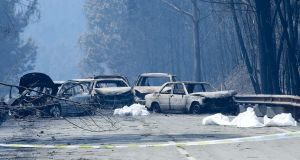 Burnt cars and body bags are seen on the on the N236 road between Figueiro dos Vinhos and Castanheira de Pera in  Portugal after a forest fire that killed at least 57 people. Photograph: EPA