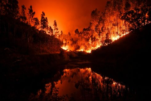 A wildfire is reflected in a stream at Penela, Coimbra, central Portugal, on June 18, 2017. Photo: PATRICIA DE MELO MOREIRA/AFP/Getty Images