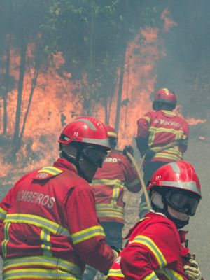 Firefighters battle a forest fire in Figueiro dos Vinhos, central Portugal. Photo:  EPA/PAULO CUNHA
