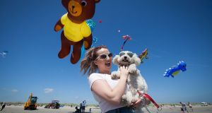 Emma Foley from Santry with her dog buddy a bichon frise enjoying the good weather at the Dublin Kite Festival on Dollymount Strand, Dublin. Photograph: gareth Chaney Collins