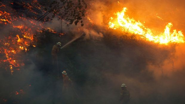 Firefighters work to put out a forest fire near the village of Fato, central Portugal, on Sunday. Photograph: Rafael Marchante/Reuters