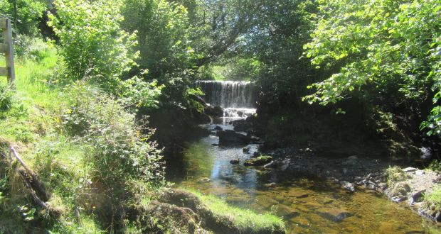 Rejoining the Slieve Bloom Way, I encounter a stream known locally as  Purcell s Brook and 0cb6ea83f6d
