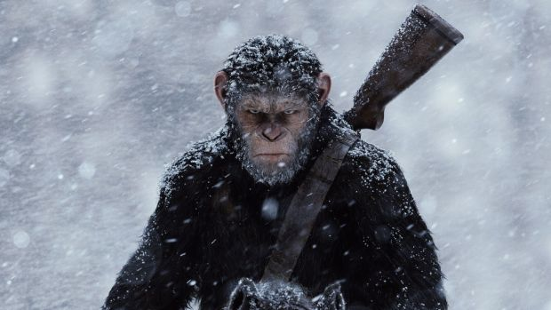 War on the Planet of the Apes