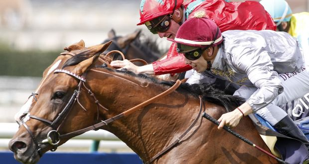 66b317e3eeb Waldgeist (red) finished runner-up to Brametot in the The Qipco Prix Du