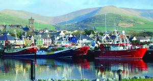 A view of Dingle from the water.