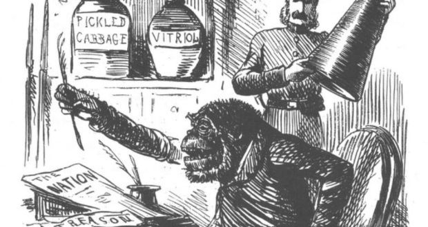 The Punch cartoon that depicted the Young Ireland Party as a gorilla