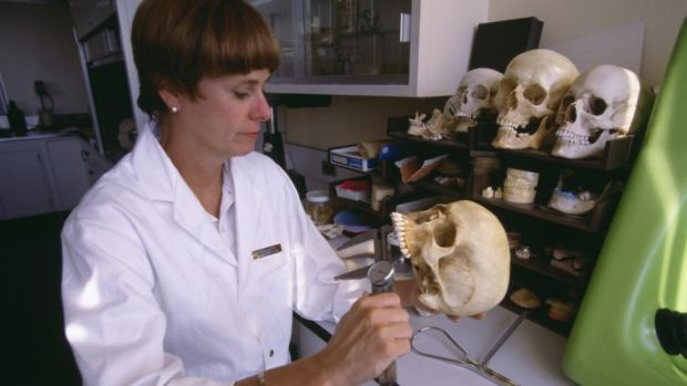 Day job: Kathy Reichs was a forensic anthropologist before she was a crime writer. Photograph: Christopher J Morris/Corbis via Getty