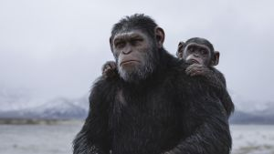 Andy Serkis as Caesar in War for the Planet of the Apes. Photograph: Twentieth Century Fox