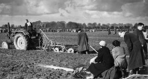 The Times We Lived In – Ladies who lunch in the short grass
