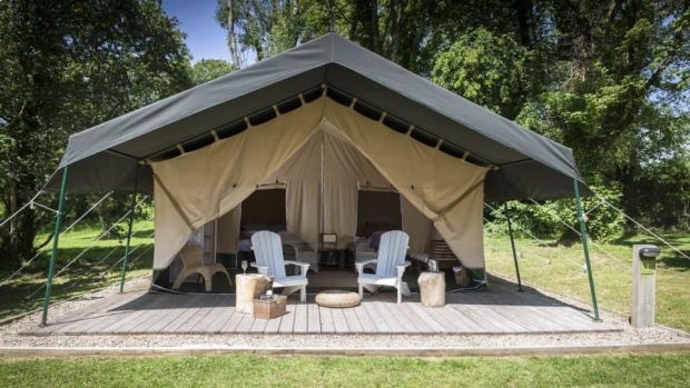 Dromquinna glamping: one of the tents dotted through the trees on the edge of Kenmare Bay