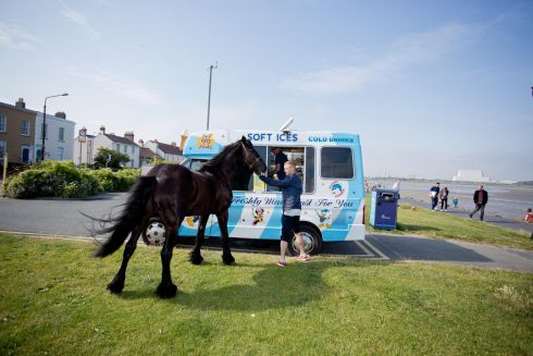 SHOWER YOU WITH SUGAR LUMPS: 'Bruce' the horse with his owner Johnny Dennihan as he waits for a ice-cream at the Sandymount Beach. Photograph: Tom Honan
