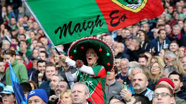 Flying the flag: a Mayo fan cheers on the team in the 2016 All-Ireland final replay against Dublin at Croke Park. Photograph: Ryan Byrne/Inpho
