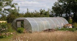 Kerry  County Council is proposing to subject polytunnels to a levy of €4.10 a square metre