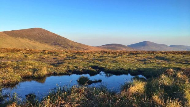 Mount Leinster, Co Carlow at sunset.