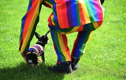 BELFAST PRIDE: A man wearing a rainbow suit lifts his dog at Belfast Pride. Photograph: Charles McQuillan/Getty Images