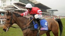 2015 Cheltenham Gold Cup hero Coneygree is set for next month's Kerry National at Listowel. Photograph: Dan Sheridan/Inpho
