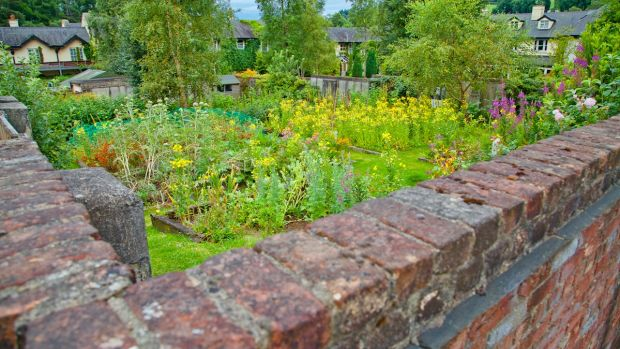 The walled garden at BrookLodge will contribute herbs and fruit to the menu for the ZEROKM dinner.