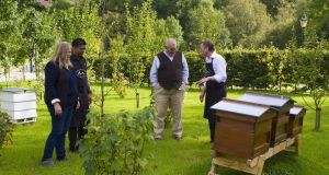 Evan Doyle (right), with apple growers Rod and Julie Calder-Potts and   bar manager Sri Pandalla  in the BrookLodge orchard and apiary which will provide cider and fruit juice, apple syrup and honey for the ZEROKM dinner.