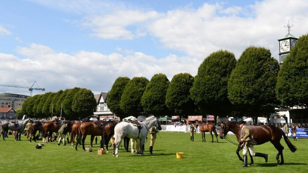 Small Hunters Class 20 judging at the opening day of the Dublin Horse Show. Photograph: Dara Mac Dónaill