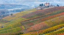 Great Escapes: Flash flight sale, and save 20% on a chauffeur-driven Italian wine tour