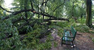 A fallen tree lays near a park bench after a heavy storm hit Lodz, central Poland. Photograph: Gregorz Michalowski/EPA
