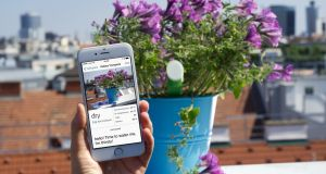 Plant sensor will, through a smartphone app, tell you when your plant needs water, if it's too dark or too cold.