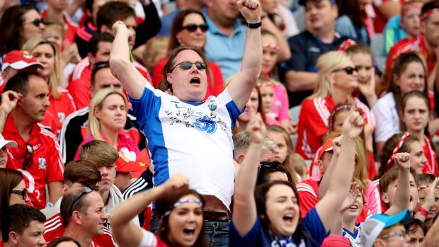 A Waterford fan celebrates a score in the semi-final: Photograph: Ryan Byrne/Inpho