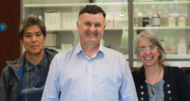 Cala Medical founders, from left: Todd Kagawa, Brian Noonan and Jakki Cooney