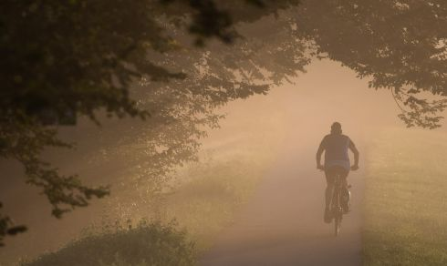 EASY RIDER: A cyclist drives on a foggy morning in Tübingen, southern Germany. Photograph: Sebastian Gollnow/AFP/Getty Images