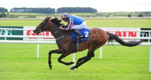 Order of St George eased to victory at the Curragh under Ryan Moore. Photograph: PA