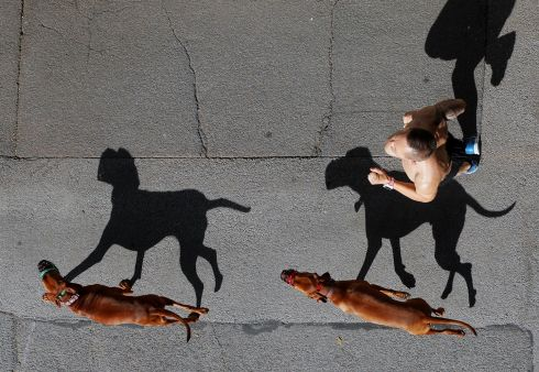 CAN'T OUTRUN THEM: A jogger and his dogs cast shadows as they run on the street in Vienna, Austria. Photograph: Heinz-Peter Bader/Reuters