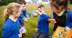 The Eco Rangers programme is now in its second year on the primary school education syllabus