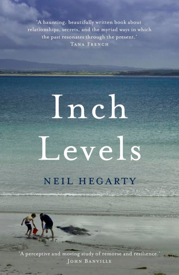 Shortlisting It For The 2017 Kerry Group Novel Of Year Award Judges AL Kennedy And Neel Mukherjee Wrote Hegartys Revolves Achingly