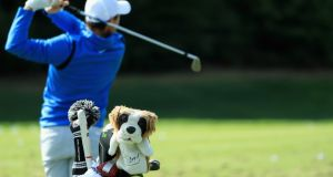 The dog headcover of Rory McIlroy is pictured on the practice ground as McIlroy practices for the Dell Technologies Championship in Norton, Massachusetts. Photo: Andrew Redington/Getty Images