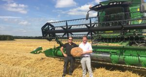 Farmer Pat McBennett and Luke Creighan, owner of The Natural Bakery, harvesting wheat in Newcastle, Co Dublin.