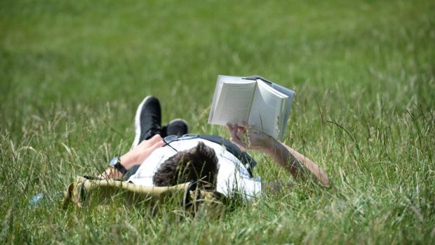 Irish summer: reading a book in the Phoenix Park during June's heatwave. Photograph: Dara Mac Dónail