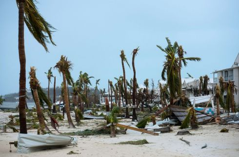 HURRICANE IRMA: Broken palm trees on a beach in Marigot, in the French Collectivity of St Martin, after the passage of Hurricane Irma. Photograph: Lionel Chamoiseau/AFP/Getty Images