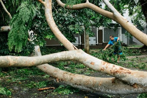 Felipe Martinez helps remove fallen branches from a tree after Hurricane Irma passed through San Juan, Puerto Rico. Photograph: Erika P Rodriguez/The New York Times