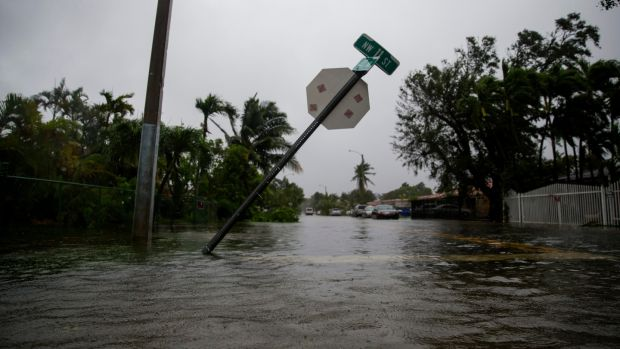 A stop sign leans over floodwaters during Hurricane Irma in Miami. Photograph: Eric Thayer/The New York Times.