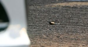 A bullet casing at the scene of a fatal shooting of a man on Wheatfields Avenue, Clondalkin. Photograph: Colin Keegan/Collins Dublin