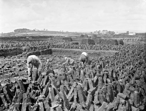 A turf bog, in Ballymena, Co Antrim. Photograph: Robert French
