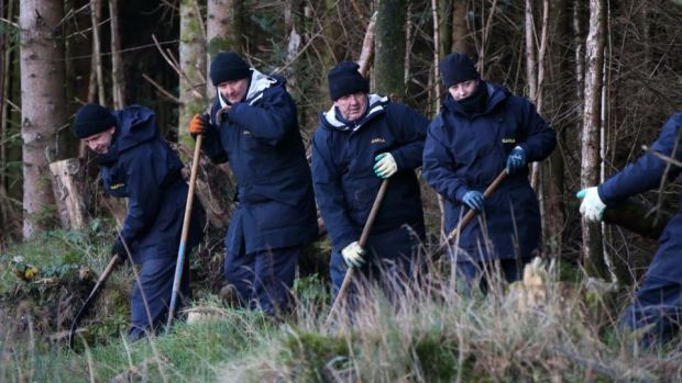 Fiona Pender: gardaí search woodland for the missing Offaly woman in 2014. Photograph: Colin Keegan/Collins