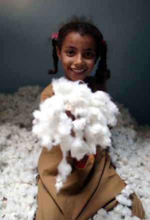 SOFTLY SOFTLY: A girl holding cotton at Abou Sneta village, al-Manofya Governorate, north of Cairo, Egypt. Cotton is one of the country's most important and renowned exports. Photograph: Khaled Elfiqi/EPA